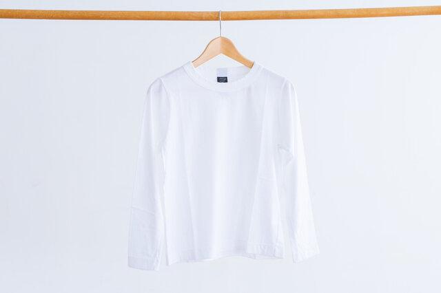 サラシ(白)
