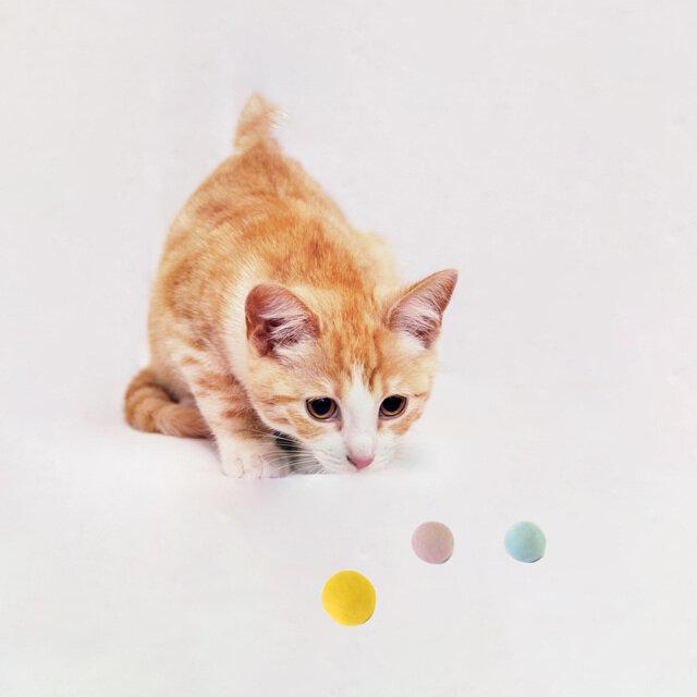 ※写真のボールはねこボール3cmになります。