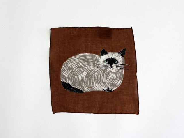 Cat(ネコ)