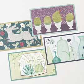 sotlight|COLOR CARDS BOX