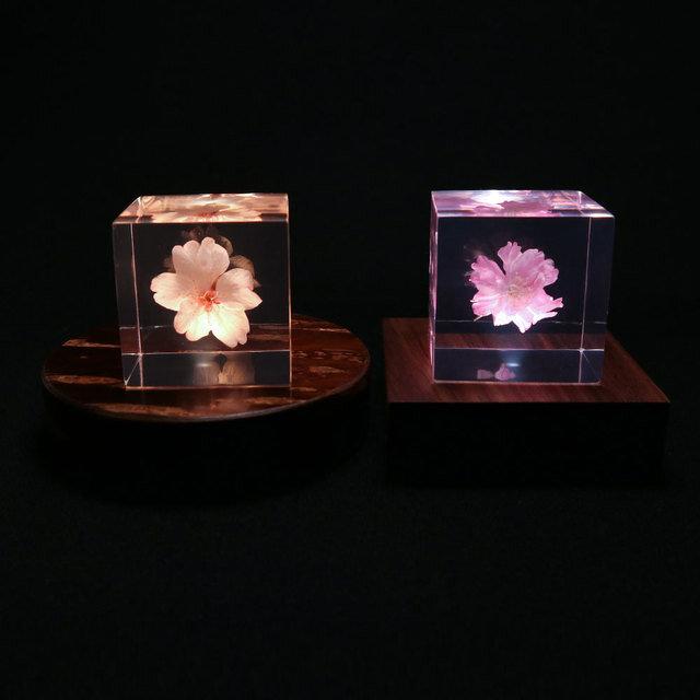 Sola cubeシリーズとの組み合わせがおすすめです。 ささやかに夜を彩るアクセントとして、テーブルの上や玄関先、廊下、寝室などでお楽しみください。