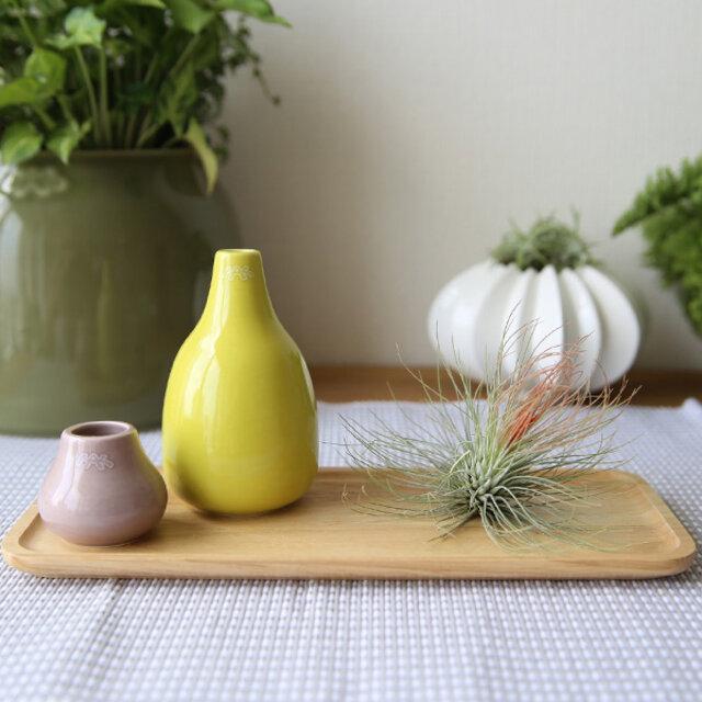 ディスプレイのトレイとしても最適です。 こんな風に花瓶と、エアープランツがリビングやキッチンの脇にあるとセンスアップしますね。
