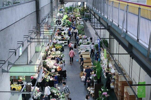 イクスが花を仕入れている東京の大田市場は、オランダのフローラ・ホランド花市場、アールスメール花市場に継いで世界3位の規模を誇り、実に多種多様な花と出逢えます。