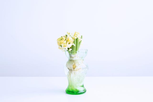 同系色のフラワーベースと花は、よりやさしくやわらかい雰囲気になります(写真はグリーン・Mサイズ)。