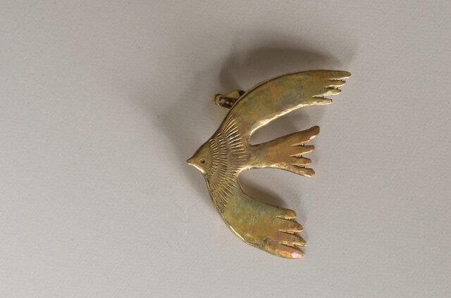 800万年前から600万年前にかけて南アメリカに棲息していた大きな鳥、アルゲンタビス。
