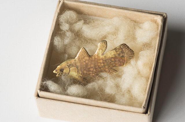 可愛いボックスに入れてお届け。ちょっと驚く贈り物にもおすすめです。