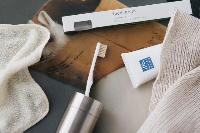 SASAWASHI 天然豚毛歯ブラシ