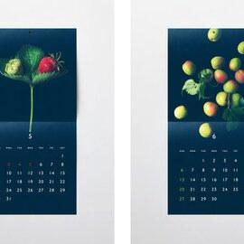 S/S/A/W | お野菜カレンダー2021