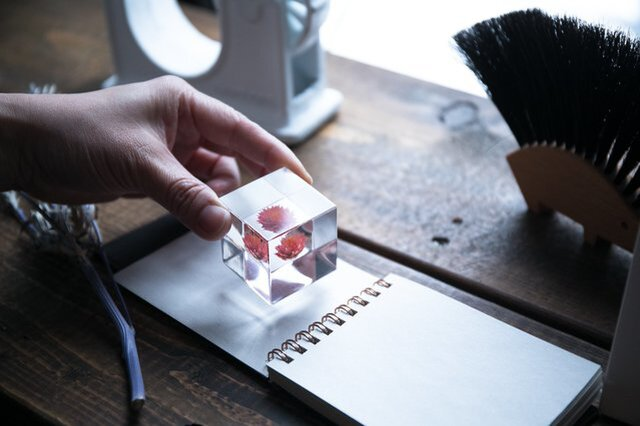 ウサギノネドコ|Sola cube