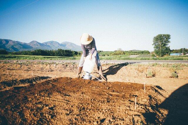 畑だってへっちゃら。動きやすくて着心地も◎仕事もはかどりそうですね。
