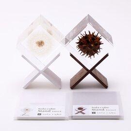 ウサギノネドコ|Sola cube stand